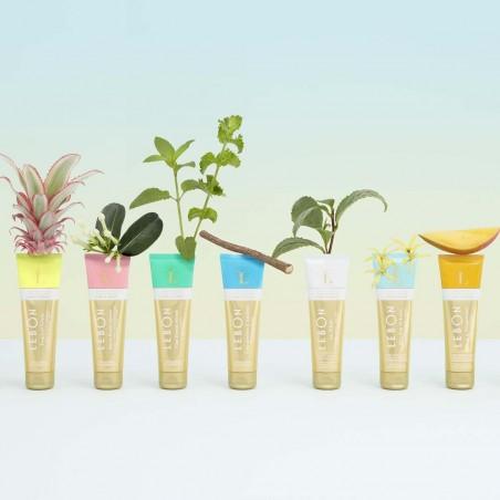 LeBon - Dentifrice Bio Back to Pampelonne - Mangue & Menthe - Bio & Made in France - Select store éthique Cosmétiques Vegans